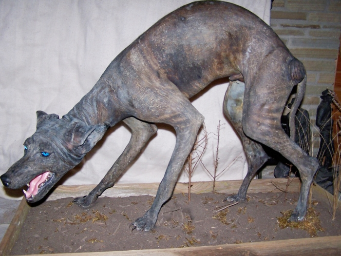 Bluedog-chupacabra